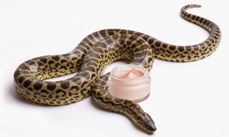 змеиный яд в косметологии